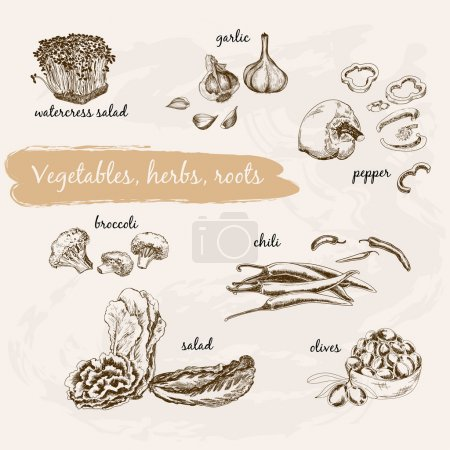 Vegetables, herb and roots.