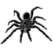 Spider tattoo - vector illustration clip art
