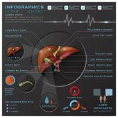 Liver And Gallbladder Medical Infographic Infochart