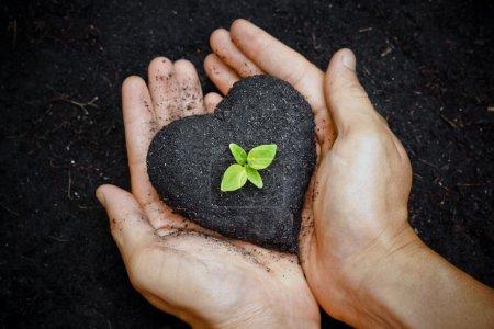 Photo pour Les mains tenant le sol en forme de cœur avec un jeune arbre vert au milieu - arbre en croissance - plantation d'un arbre - aiment notre monde - image libre de droit