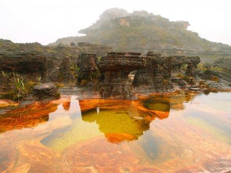 Incredible landscape. Mount Roraima. Plateau of Te...
