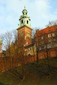 Wawel Hill Wawel Castel
