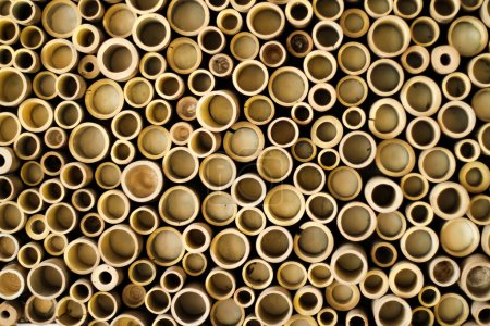 Photo for A stack circle of bamboo cuts - Royalty Free Image