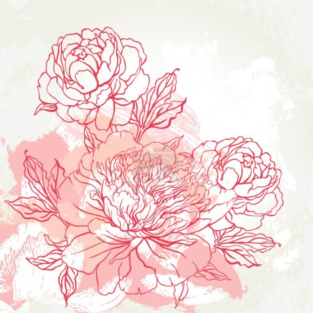 Illustration for Beautiful peony bouquet design on beige background. Hand drawn vector illustration. - Royalty Free Image