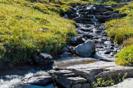 Rapids in Glacier National Park next to the Going to the Sun Roa