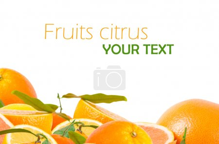 Photo pour Fruits agrumes sur blanc - image libre de droit