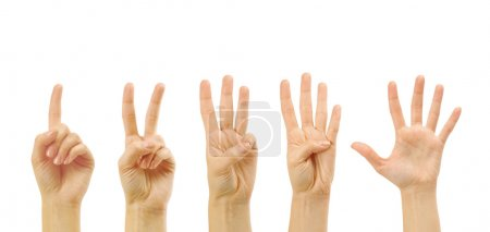 Counting woman hands (1 to 5)