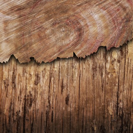 Photo pour Panneau de bois fissuré - image libre de droit