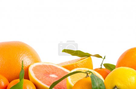 Photo for Fruits citrus on white - Royalty Free Image