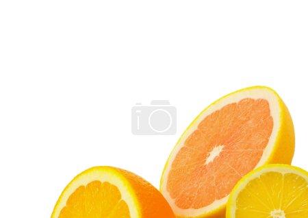 Photo for Citrus fresh fruit isolated on a white background - Royalty Free Image