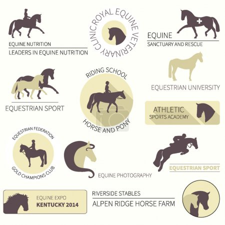 Set of vector icons with horse equipment