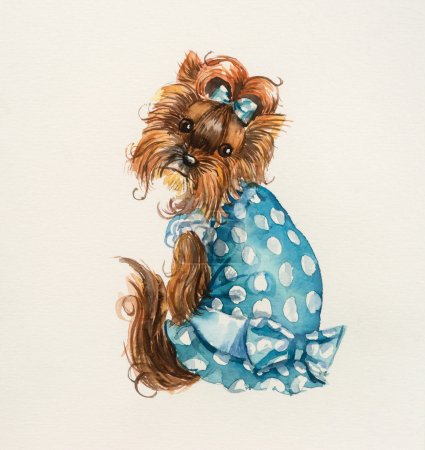 Dog in a blue dress.