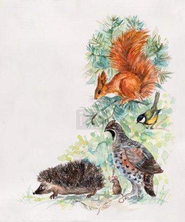 Wildlife corner, frame. Decoration with wildlife scene.