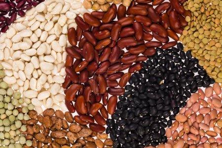 Photo pour Collection de divers haricots sur fond blanc. - image libre de droit