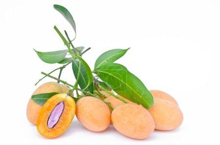 Sweet yellow Marian plum ,Plum mango