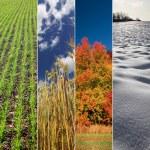 Four season vertical banners - spring, summer, aut...