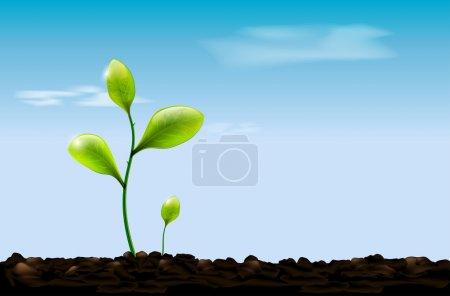 Green sprout , soil and blue sky with clouds