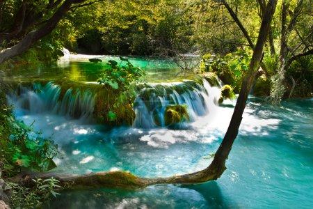 Beautiful, exotic waterfall landscape