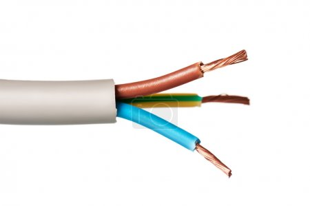 Bared copper wire