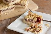 Raspberry Fruit and Oatmeal Bars