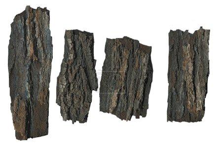 Photo pour Pièces d'écorce isolées sur fond blanc - image libre de droit