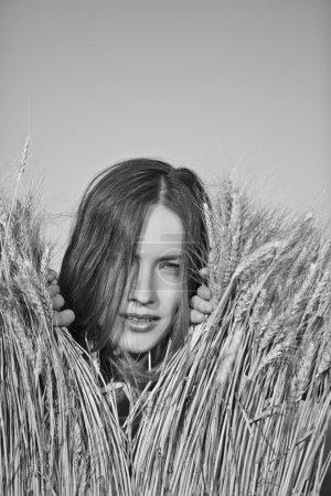 Beauty woman in a field