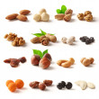 Nuts and dried nuts can be used in food-related work family. The path was easy to work.
