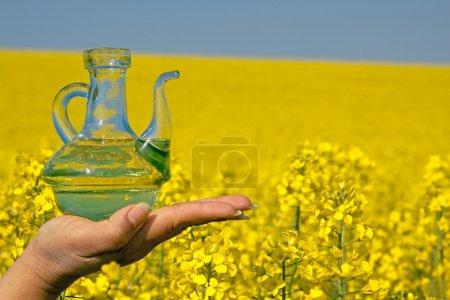 Photo pour Huile de viol dans une bouteille en verre devant un champ de viol en pleine floraison - image libre de droit