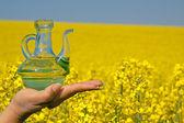 Rape oil into a glass bottle