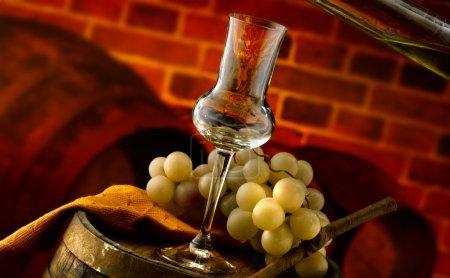 Glasses of grappa
