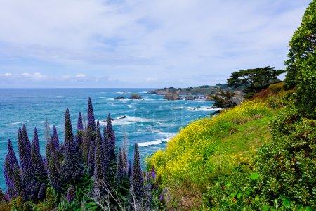 Photo pour Côte californienne à Mendocino - image libre de droit