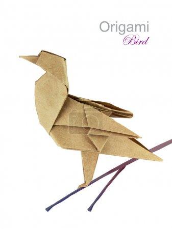 Foto de Pájaro de origami papel marrón sobre una rama - Imagen libre de derechos