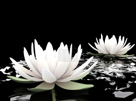 Photo pour Lotus 3d - image libre de droit