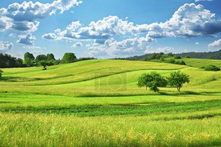 Foto de Paisaje de campo de césped verde con nubes fantásticas en segundo plano. - Imagen libre de derechos