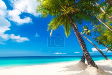 Dream scene. Beautiful palm tree over white sand beach. Summer n