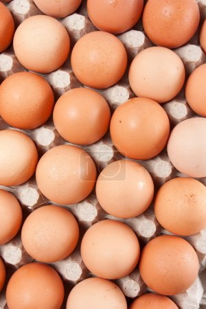 Photo for Carton of  fresh brown eggs - Royalty Free Image