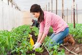 Junge schöne Garten Arbeitnehmerin