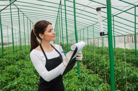 Portrait of young agriculture female engineer working in greenhouse