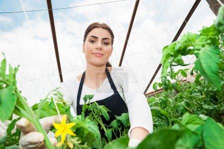 Young garden female worker