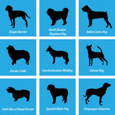 Dogs Icons