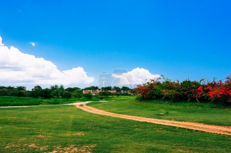 Photo for Green grass field landscape with fantastic clouds in the background. Summer landscape with green grass, road and clouds in Dominican republic - Royalty Free Image