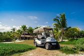 Palm a tropické pláži v tropickém ráji