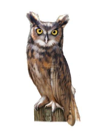 An eagle owl sitting on the log.