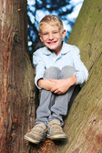Boy sitting between the branches of tree