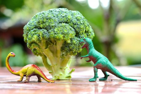 Photo for Funny picture of toy dinosaur eating broccoli tree. Photo can be used to help cooking with children, preparing kid-friendly dishes and promoting healthy food for children - Royalty Free Image