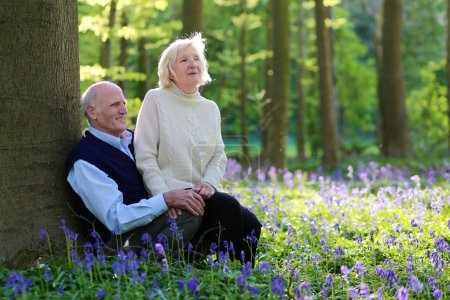 Senior couple relaxing in summer forest