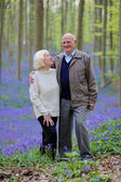Couple in forest full of hyacinth