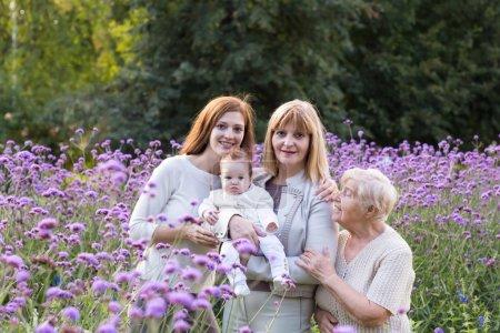 Foto de Cuatro generaciones de mujeres en un campo lila hermoso - Imagen libre de derechos