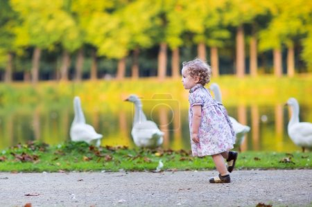 Baby girl chasing wild geese in an autumn park