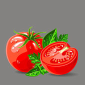 Fresh tomatoes with parsley and basil with water drops illustration